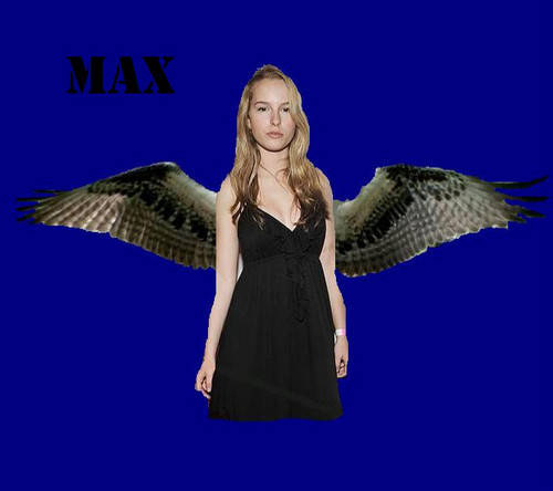 Bridget Mendler as Max