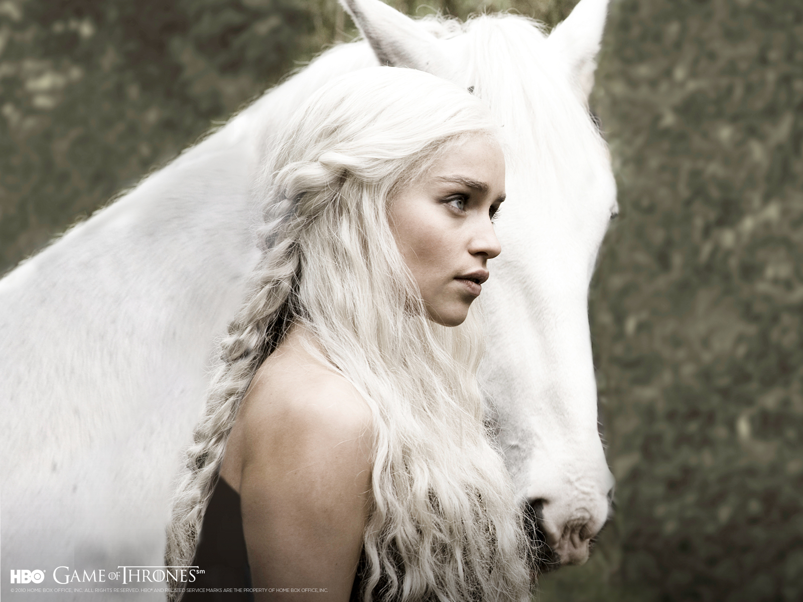 Khaleesi Now