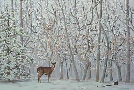 Illusions wallpaper called Deer