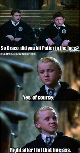 Dracoo!