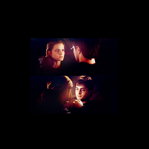 Harry and Hermione wallpaper entitled H/Hr