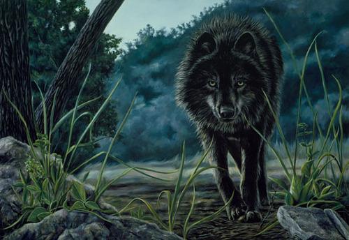 Krystal's 狼 form