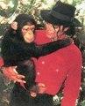 Michael Jackson N1 - michael-jackson photo