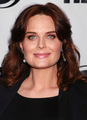 The 29th Annual Gay & Lesbian Film Festival Screening Of 'The Perfect Family' [July 17, 2011] - emily-deschanel photo