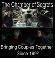 The Chamber of Secrets - harry-potter-vs-twilight photo