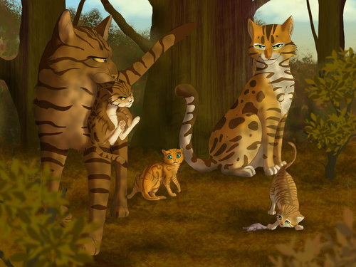 Tigerstripe and Spottedheart