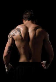 Tom Hardy Images Warrior Wallpaper And Background Photos