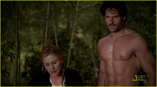 Sookie and Alcide 바탕화면 possibly with skin and a portrait titled True Blood 4x04 - Sookie and Alcide