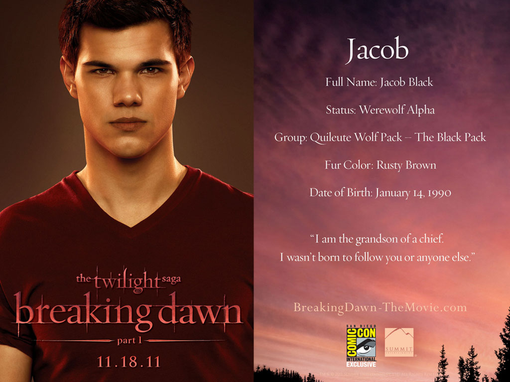 Breaking dawn book report help