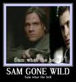 dean&sam