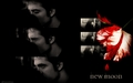new moon wallpaper - edward-cullen wallpaper