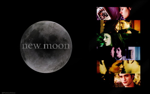New Moon Movie wallpaper entitled new moon wallpaper