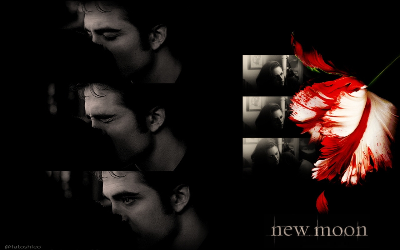 New moon wallpaper twilight series wallpaper 23858090 for What does the song moon river mean