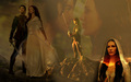 richard and kahlan  - legend-of-the-seeker wallpaper