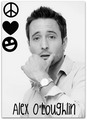 Alex O'Loughlin<33 - hawaii-five-o photo