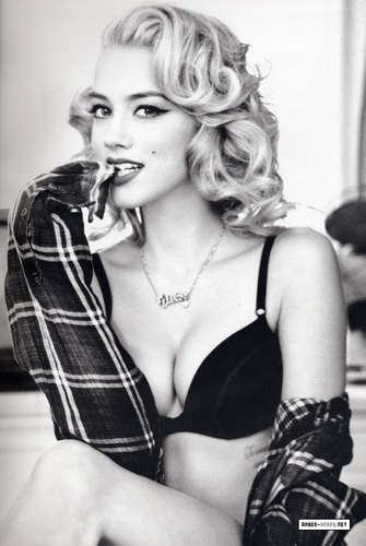 Amber for Guess