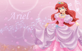 Ariel in pink - the-little-mermaid wallpaper