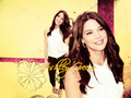 ashley-greene - Ashley <3 wallpaper