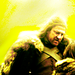 "Eddard ""Ned"" Stark - lord-eddard-ned-stark icon"