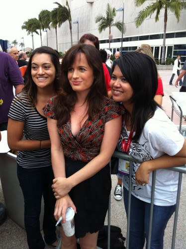 Elizabeth Reaser Обои with a улица, уличный called First pics of Elizabeth at Comic Con in San Diego!
