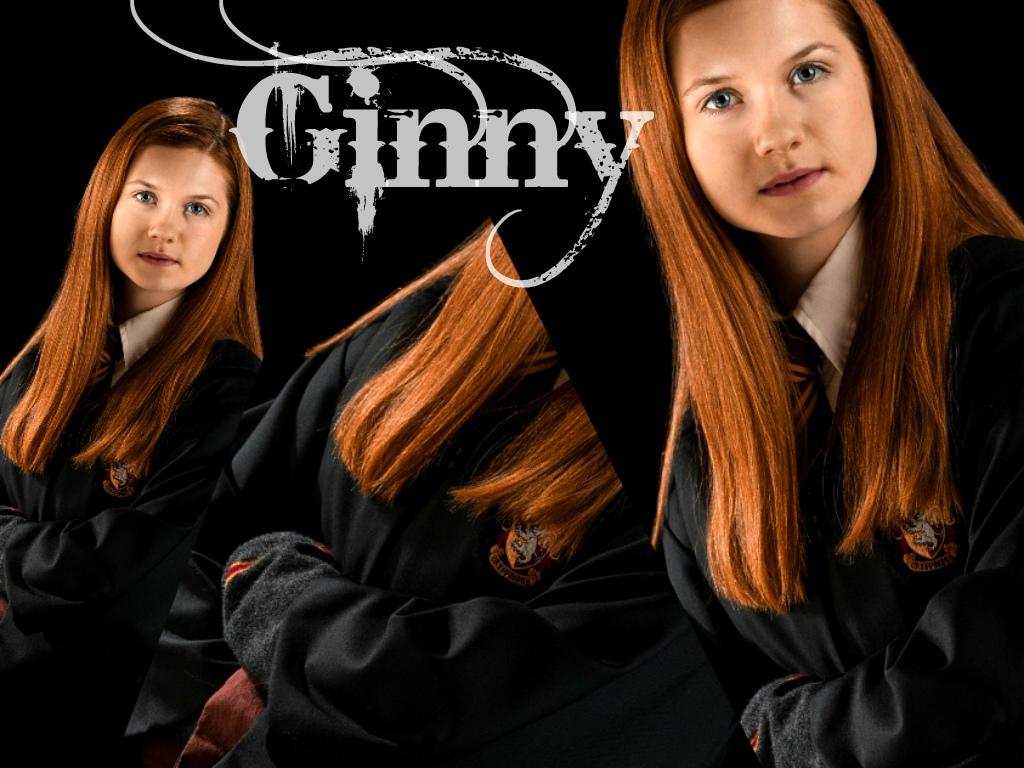 essay fan ginny harry site