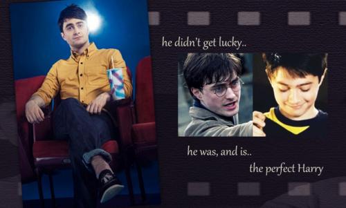 Harry - Dan