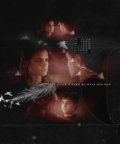 Harry and Hermione wallpaper titled Harry/Hermione