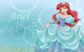 Walt Disney afbeeldingen - Princess Ariel