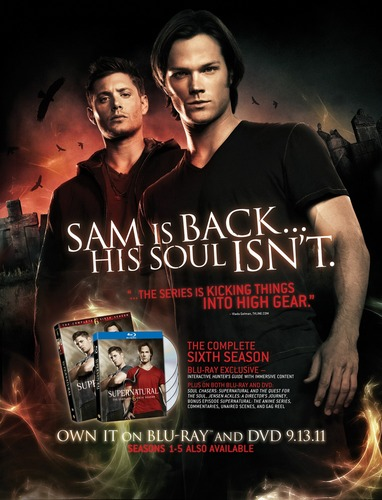 Supernatural wallpaper probably containing a sign, a portrait, and anime called SPN - S6 DVD/BR Ad