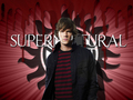 Sam Winchester Wallpaper - sam-winchester wallpaper