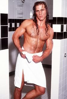 Shawn Michaels Hintergrund with a stück, hunk and skin entitled Shawn Michaels