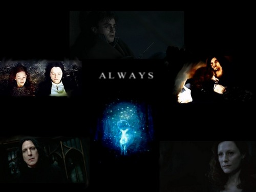 Harry Potter wallpaper possibly containing a concerto called Snape - Lily - Harry Always ♥