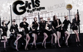 So Nyeo Shi Dae - jessica-snsd wallpaper