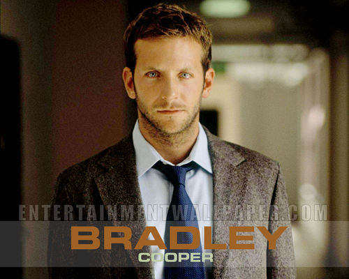 bradley cooper images bradley cooper hd wallpaper and
