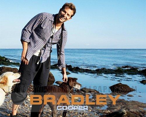 Bradley Cooper karatasi la kupamba ukuta called bradley_cooper