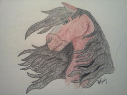 my drawing of Braken