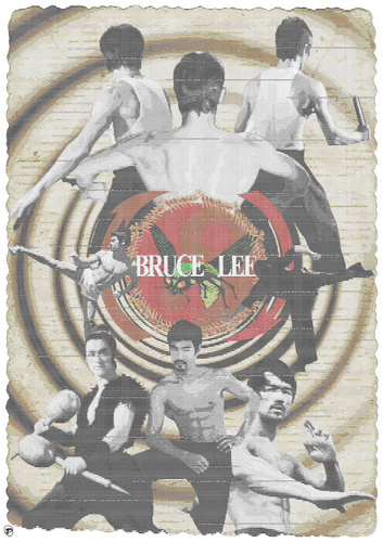Bruce Lee audio visual poster