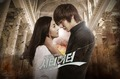 City Hunter - city-hunter photo