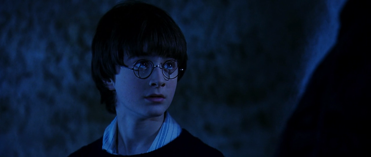 Harry Potter and the Sorcerer's Stone - Daniel Radcliffe ... Daniel Radcliffe Fan