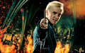 Draco Malfoy - HP7 p2 - the-guys-of-harry-potter wallpaper