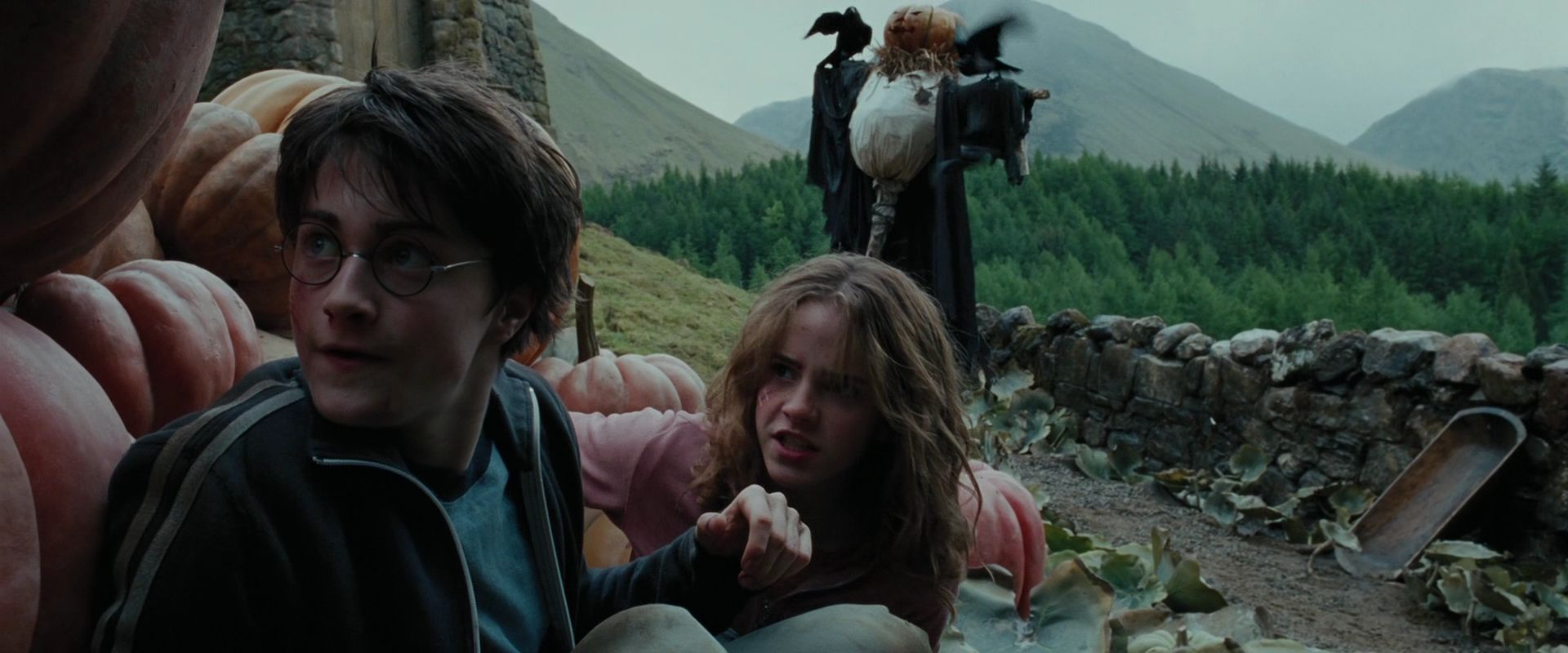 a personal account of seeing harry potter the prisoner of azkaban movie And buy harry potter and the prisoner of azkaban about the movie in harry potter and the prisoner i was put at ease after seeing the.