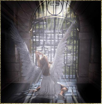 Fantasy Angel –Jäger der Finsternis