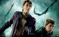 Fred & George Weasley - HP7 p2 - the-guys-of-harry-potter wallpaper