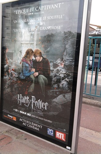 French Deathly Hallows Part 2 Posters