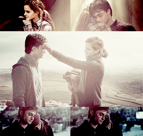 Harry and Hermione wallpaper titled H/Hr