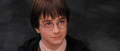 Harry Potter and the Sorcerer's Stone - daniel-radcliffe screencap