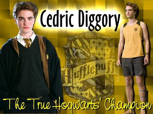 Hufflepuff images Hufflepuff HD wallpaper and background photos