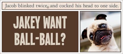 Jakey want ball ball?