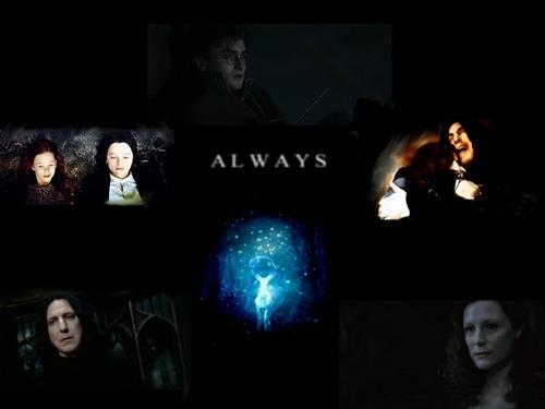 Lily & Severus