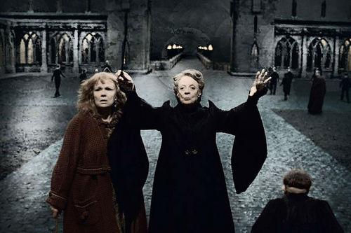 McGonagall and Molly - DH 2